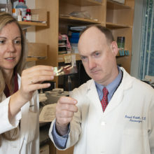 Searching for new therapies, Priscilla Brastianos, MD, and Daniel Cahill, MD, PhD, analyze their patients' tissue samples to find targets to treat cancers that have spread to the brain for the Brain Metastasis Program.