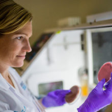 For Caroline Mitchell, MD, PhD, researching the female reproductive tract has been challenging from both a scientific and a social standpoint.