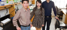 From the left, Dr. Huabiao Chen with research assistants Yang Zeng and Binghao Li.