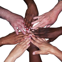 Diversity-Inset