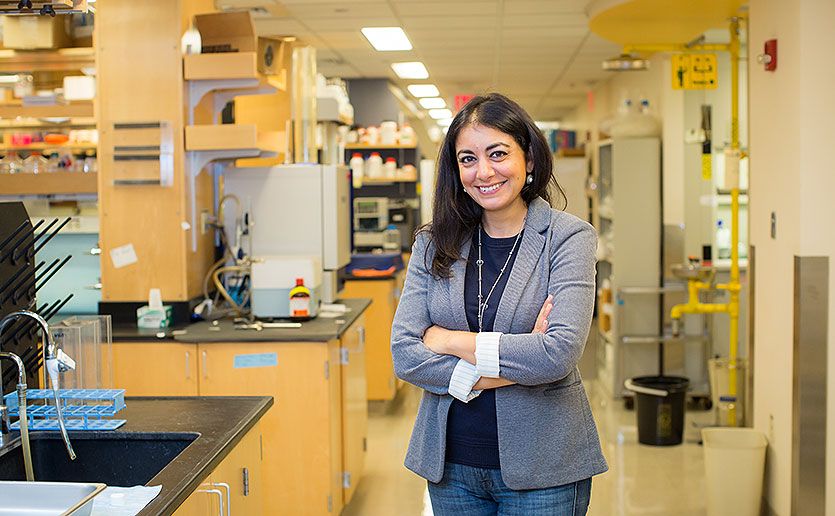 Huntington's disease researcher Ghazaleh Sadri-Vakili, PhD