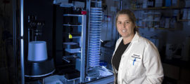 Cammie Lesser, MD, PhD,is investigatinga technique used by harmful bacteria such as shigella to infect humans and trying toreengineer it to provide a helpful function instead.