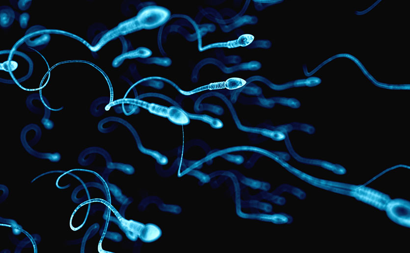 Current standard methods for testing sperm, like those pictured, for infertility can be expensive, labor-intensive and require testing in a clinical setting.