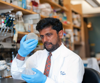 Dr. Ramnik Xavier and colleagues made headlines in 2014 with the news that Crohn's disease is linked to an imbalance of microbes in the gut.