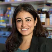 Ghazaleh Sadri-Vakili, PhD