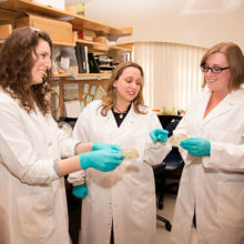 Christina Faherty, PhD, and her Mass General research team are developing new strategies for treating Shigella.  Pictured are, from left, are Rachael B. Chanin, formerly a Mass General technician; Dr. Faherty; and Kourtney P. Nickerson, PhD, a postdoctoral fellow.
