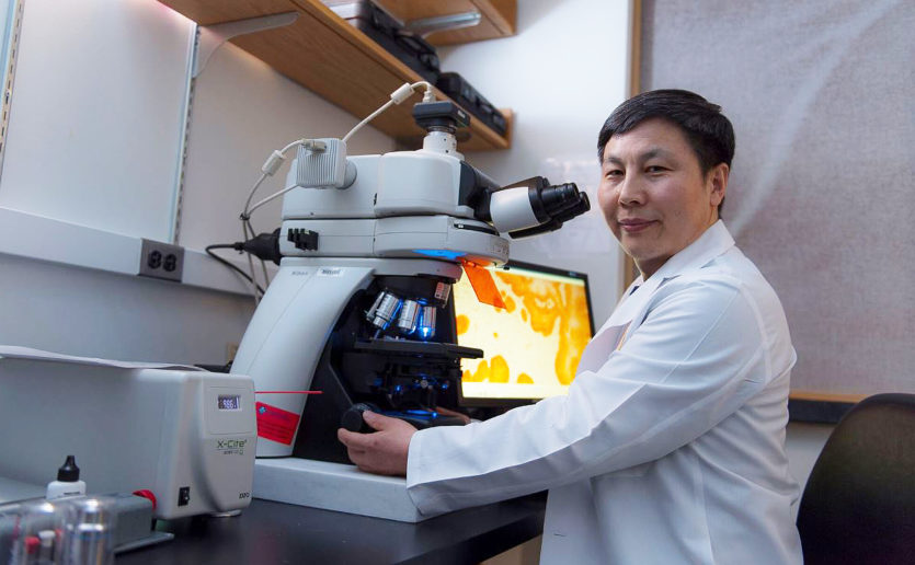 The early detection project in the laboratory of Cheng Wang, PhD, aims to discover key alterations - during malignant transformation of ovarian and fallopian tube cells.