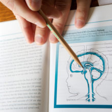Textbook with a diagram of a brain