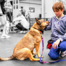 Holden Czahor built a unique bond with Allie, the German Shepherd mix he was paired with for the Doggonit program.