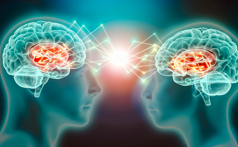 Increasing evidence suggests that empathy is hardwired into the brain.