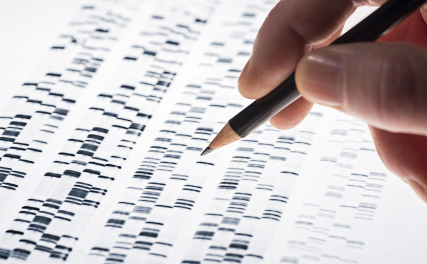 Researchers at the Center for Genomic Medicine are using locally developed initiatives to gain new insights into the genetic underpinnings of health and disease.