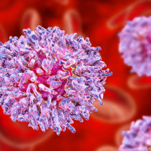 Leukemia occurs when healthy lymphoctyes change and grow out of control. Some of the most aggressive and drug-resistant forms of the disease are associated with mutations in a family of proteins known as IKAROS.