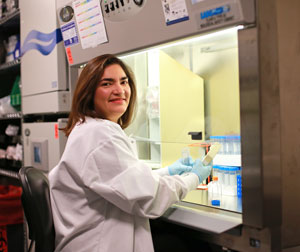 In her immunotherapy research, Dr. Maus focuses on T cells, a type of white blood cell key to the human immune system.
