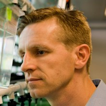 Randall T. Peterson, PhD, hopes his research with tiny, tropical fish and robots will improve the lives of people with Alzheimer's disease, schizophrenia, heart conditions and leukemia.