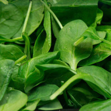 Vitamin A, found in leafy greens such as spinach, is necessary to maintain a healthy immune system.