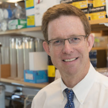 Dr. Timothy Graubert, an expert on the genetic basis of blood cancers, is leading an innovative research effort at Mass General.